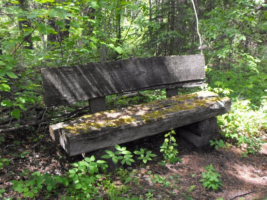 Windermere, Canadá: Find this lovely bench on the trails!