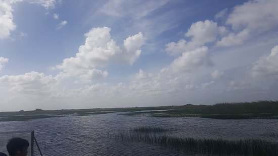 Coopertown Airboats: 20170620_165253_large.jpg