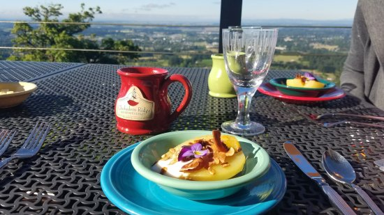 Chehalem Ridge Bed and Breakfast: Breakast on the Patio...1st Course.