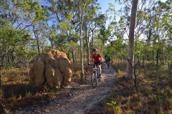 Atherton, Australien: Davies Creek