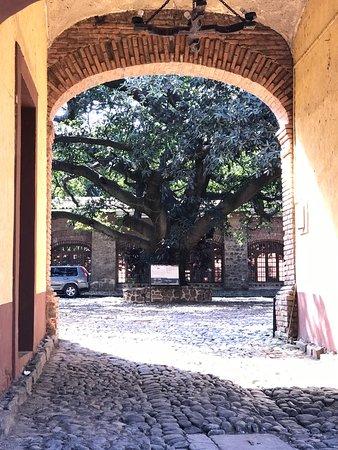 Amatitan, México: photo5.jpg