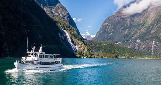 Image result for boat trips at milford sound