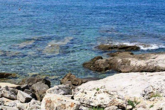 Savudrija, Croacia: photo1.jpg