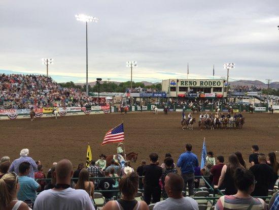 Reno Rodeo Cattle Drive: photo0.jpg