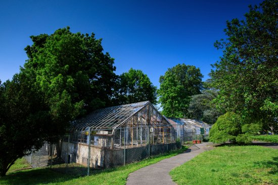 New Rochelle, NY: Old Garden Conservatory