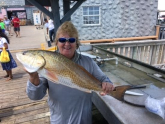 "Port Isabel, TX: 38"" bull red"
