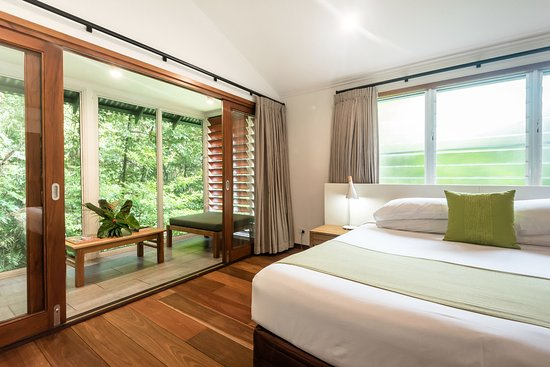 Rainforest Bayan at Daintree Ecolodge & Spa