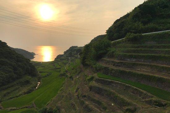Genkai-cho, ญี่ปุ่น: photo0.jpg