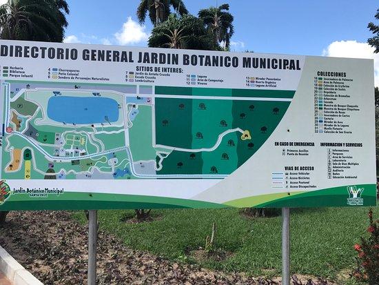 Jardin Botanico Santa Cruz: Mapa do jardim