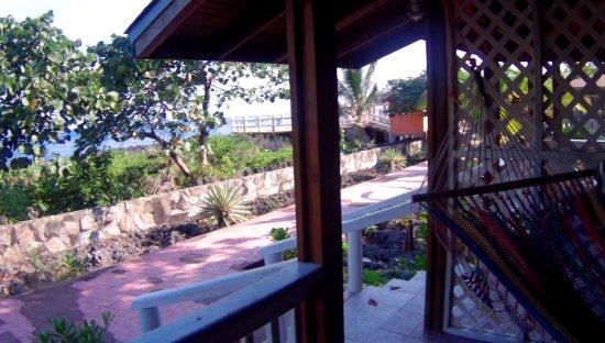 Bilde fra Seagrape Plantation Resort