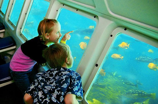 Catalina Island Day Trip from Anaheim or Los Angeles with Undersea...