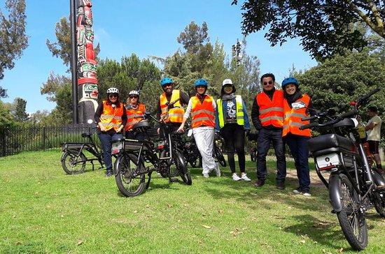 Mexico City Electric Bike Tour