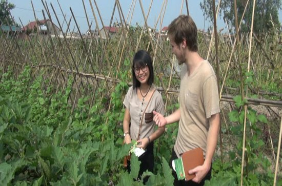 Experience farm life agriculture and...