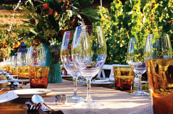 Romantic Vineyard Dinner Experience...