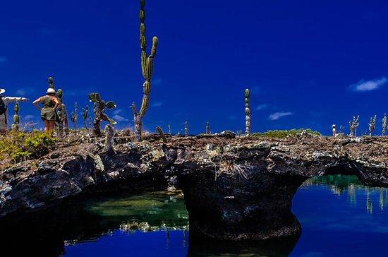 Los Túneles - Isla Isabela