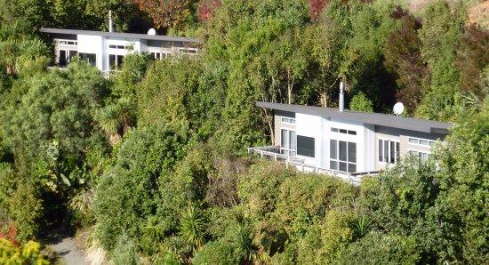 "Havelock North, Nuova Zelanda: The 2 bedroom cottages ""Ribbonwood"" & 'Lacebark"" are pole cottages"