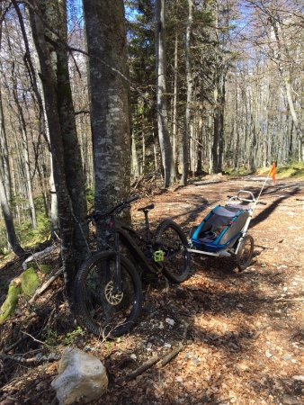 Bohinjska Bela, Słowenia: Family trip with e-mountain bikes makes fun for all.