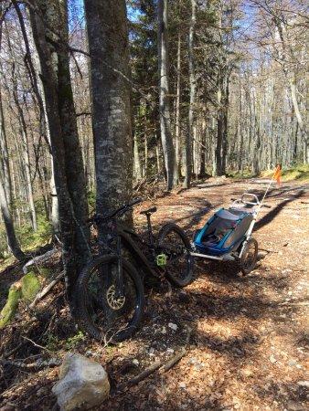 Bohinjska Bela, Slovenië: Family trip with e-mountain bikes makes fun for all.
