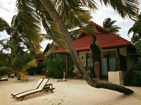 Vihamanafushi: photo7.jpg