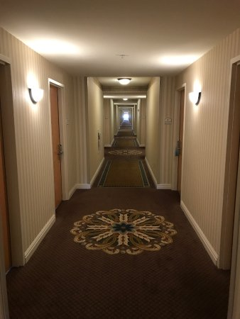 Canonsburg, PA: Hallway that went on for ever