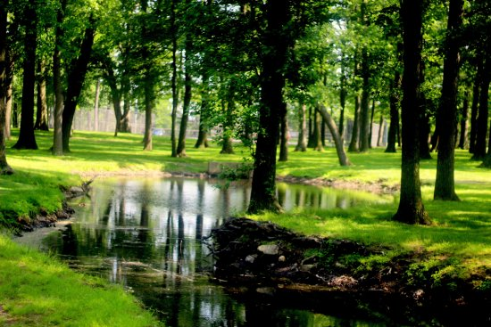 Woodbridge, نيو جيرسي: stream