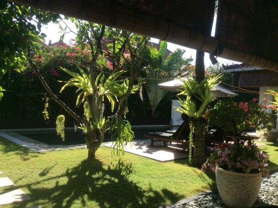 The Zen Villas: View from the verandah