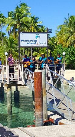 Plantation Island Resort: The native band welcomes you upon arrival.