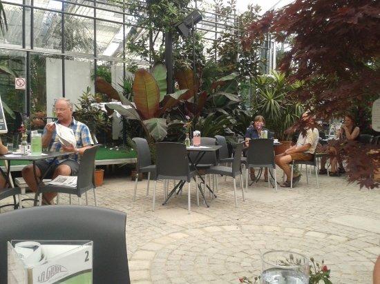 """St. Florian, Autriche : La Gioia Cafeteria , Sitzbereich im """"Palmengarten"""""""