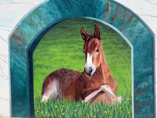 Horse, Mural Arts Program, Hayward, Ca