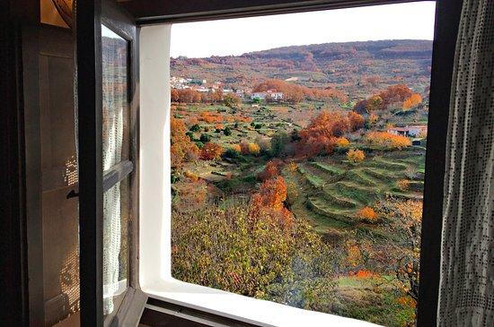 Floracion del Valle del Jerte