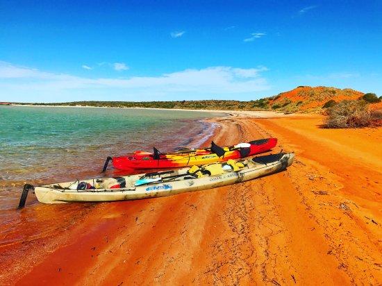 Denham, Australia: Fanatic Eco Cultural Tourism Experiences