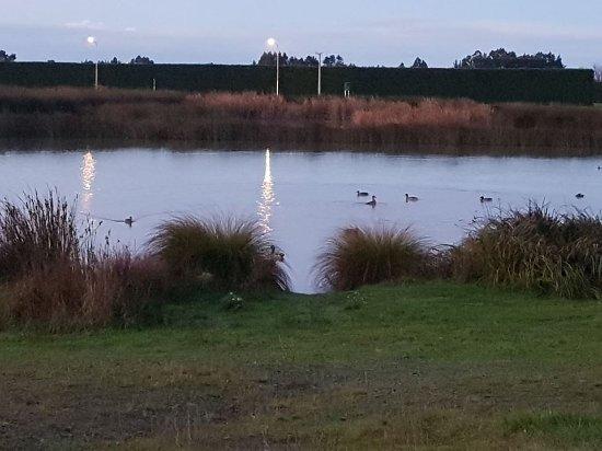 Rangiora, Nueva Zelanda: Our Lake