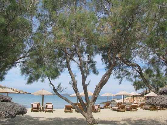 Parasporos, Greece: Photo from the beach