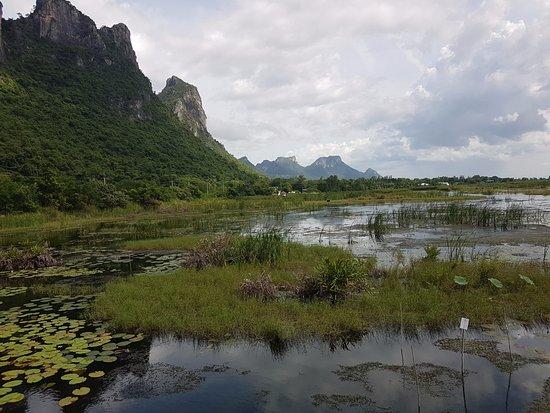 Kui Buri, Tailândia: Marshes