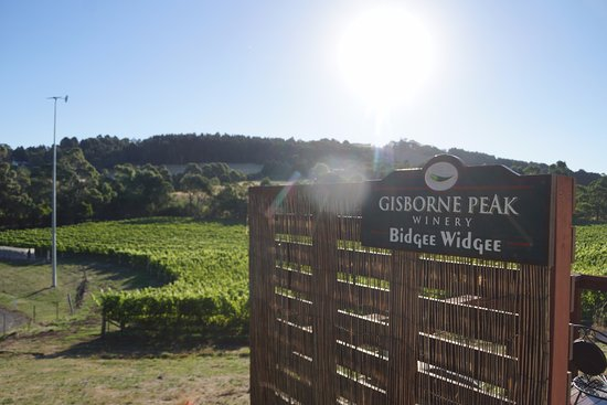 gisborne peak winery all you need to know before you go. Black Bedroom Furniture Sets. Home Design Ideas