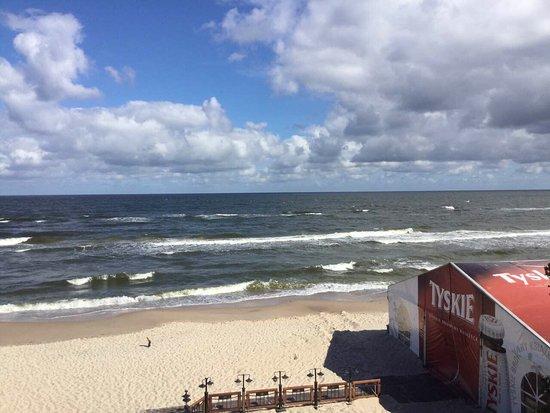 Lukecin, بولندا: Plaża. Las sosnowy 