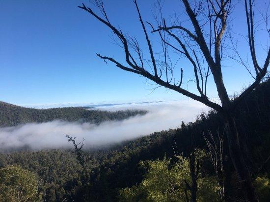 Yea, Australia: photo3.jpg