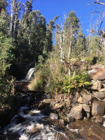Yea, Australia: photo7.jpg