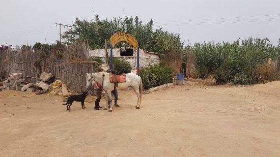 Tamraght, Marokko: Départ en rando :)