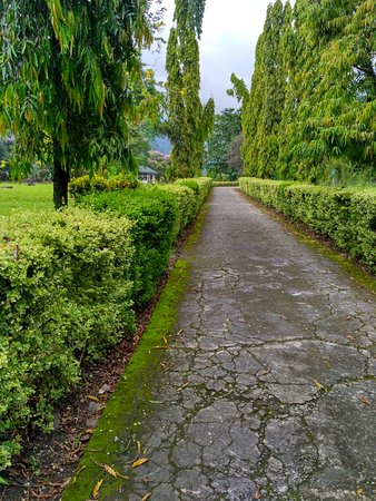 Roing, Hindistan: IMG_20170620_152416_HDR_large.jpg