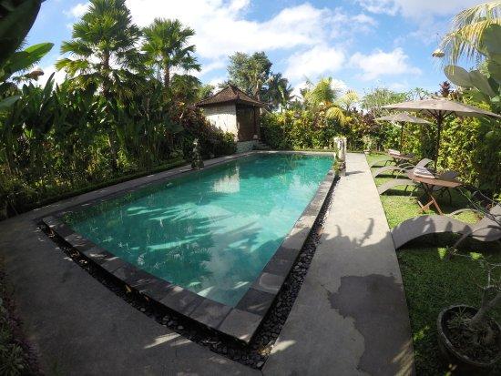 Bali Dream Resort Picture Of Bali Dream Resort Ubud Tripadvisor