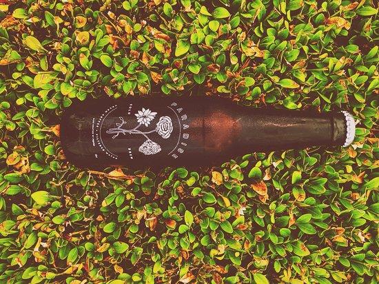 Winnetka, IL: cold brew bottles