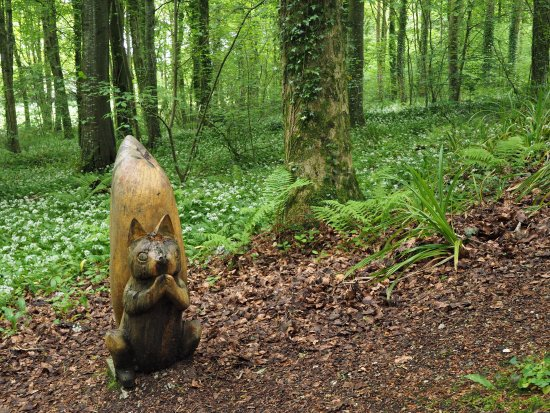 Carved Squirrel on Glenarm Forest Walk