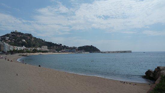 photo1.jpg - Изображение Playa de S'Abanell, Бланес ...