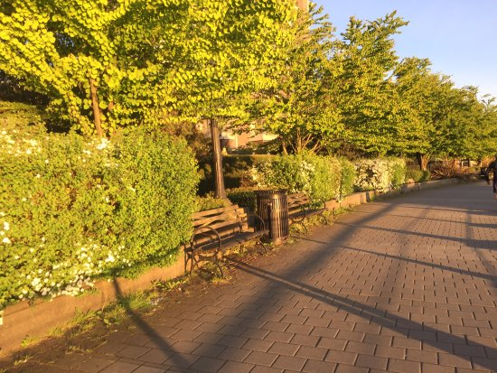 Vancouver Marriott Pinnacle Downtown Hotel: running path along the harbor