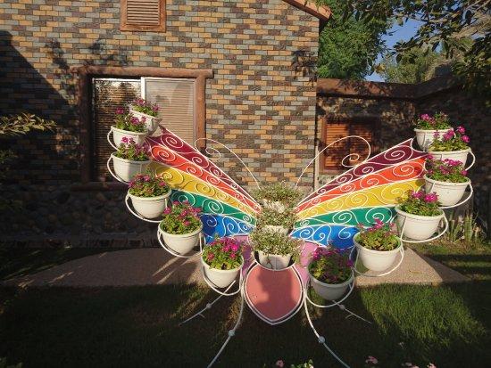 Dubai Butterfly Garden: Butterfly Garden 9