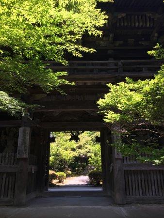 Izumi, Japan: 由緒正しき山門