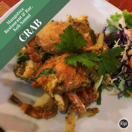 Lipa Noi, Tayland: Crab @mango tree restaurant & Bar, Koh Samui