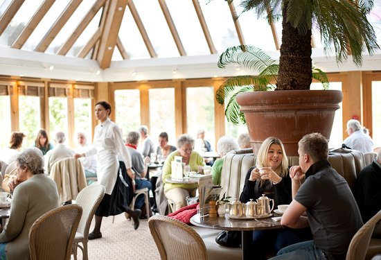 Bettys Cafe Tea Rooms - Harlow Carr: Bettys Harlow Carr is a beautiful place to enjoy a relaxing moment