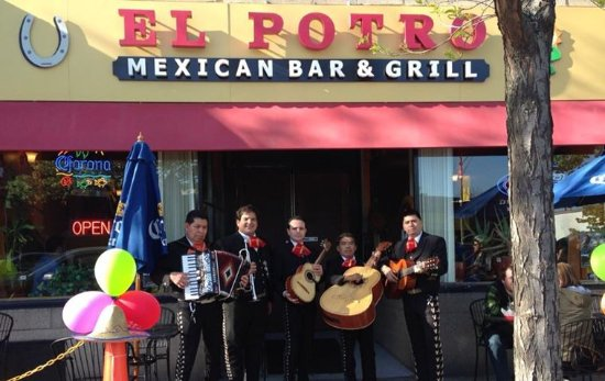 Somerville, MA: Live Mariachi every week